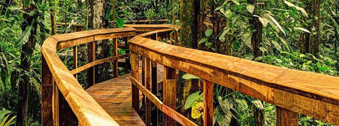 Zu Besuch bei: Cinco Ceibas Costa Rica