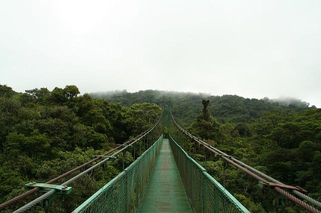 Monteverde - Foto: Fran Devinney
